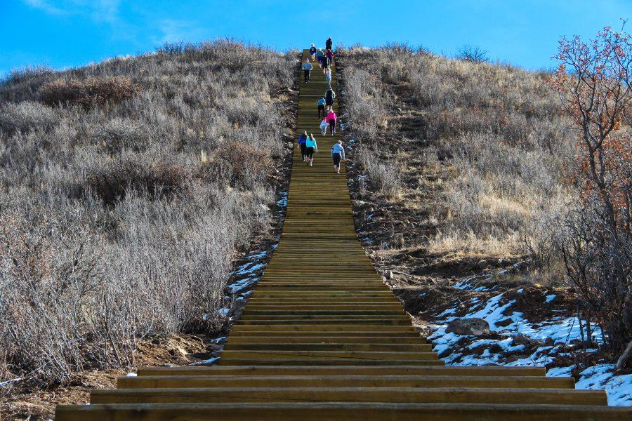 At exactly 150 steps, the all-wooden staircase at Phillip S. Miller Park serves as a centerpiece for the complex, providing a fun (and tiring) climb for families and solo adventure seekers. Photo by Heather Monks