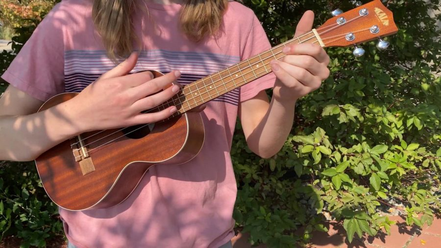 Ukulele in the Fall